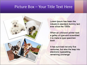 0000078281 PowerPoint Template - Slide 23