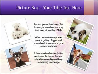 0000078281 PowerPoint Templates - Slide 24