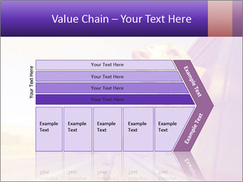 0000078281 PowerPoint Templates - Slide 27