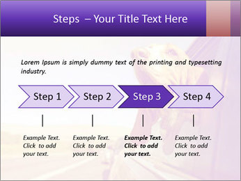 0000078281 PowerPoint Template - Slide 4
