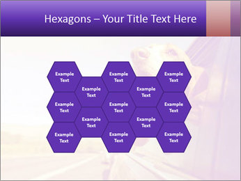 0000078281 PowerPoint Templates - Slide 44