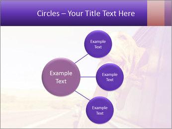 0000078281 PowerPoint Templates - Slide 79