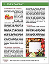 0000078293 Word Template - Page 3
