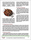 0000078293 Word Template - Page 4