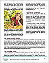 0000078296 Word Templates - Page 4