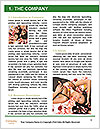 0000078297 Word Template - Page 3