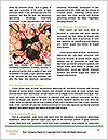 0000078297 Word Template - Page 4