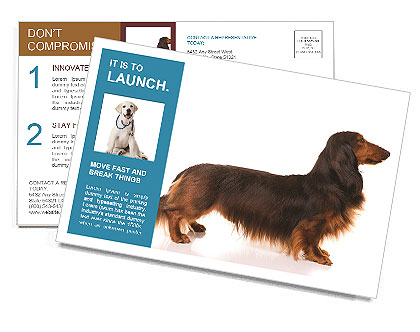 0000078311 Postcard Templates
