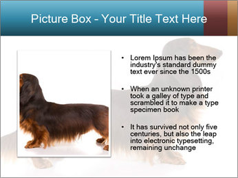 0000078311 PowerPoint Templates - Slide 13