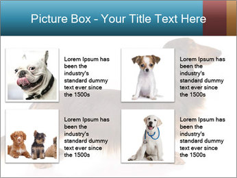 0000078311 PowerPoint Templates - Slide 14