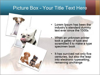 0000078311 PowerPoint Templates - Slide 17