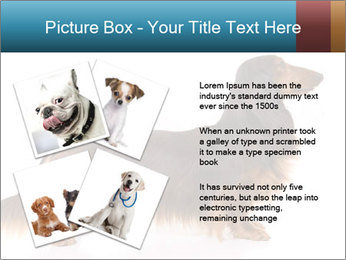 0000078311 PowerPoint Templates - Slide 23