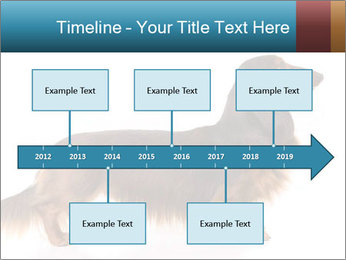 0000078311 PowerPoint Templates - Slide 28