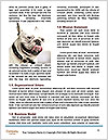 0000078311 Word Template - Page 4