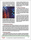 0000078313 Word Template - Page 4