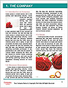 0000078315 Word Templates - Page 3