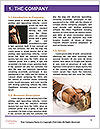 0000078317 Word Templates - Page 3