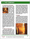 0000078319 Word Templates - Page 3
