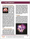 0000078322 Word Templates - Page 3
