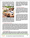 0000078323 Word Template - Page 4