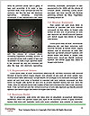 0000078329 Word Templates - Page 4