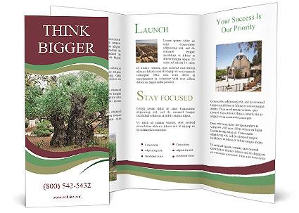 0000078330 Brochure Templates