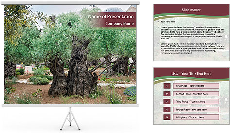 0000078330 PowerPoint Template