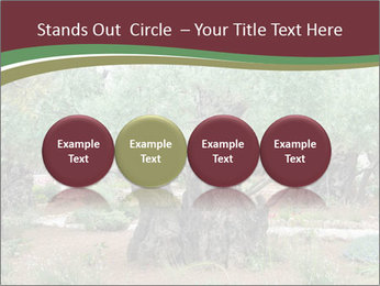 0000078330 PowerPoint Templates - Slide 76
