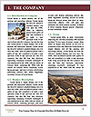 0000078330 Word Template - Page 3