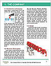 0000078331 Word Template - Page 3