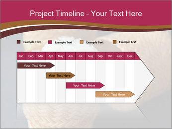 0000078334 PowerPoint Template - Slide 25