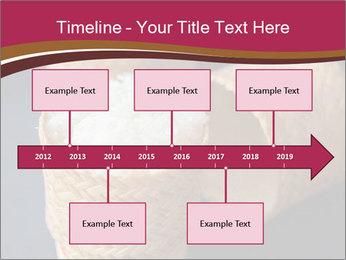 0000078334 PowerPoint Template - Slide 28