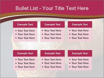 0000078334 PowerPoint Template - Slide 56