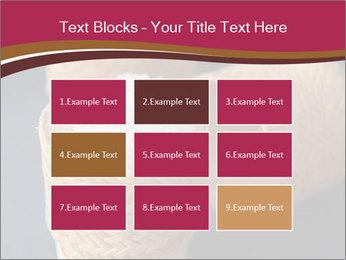 0000078334 PowerPoint Template - Slide 68