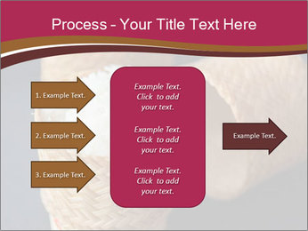 0000078334 PowerPoint Template - Slide 85