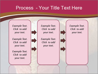 0000078334 PowerPoint Template - Slide 86