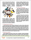 0000078339 Word Templates - Page 4