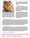 0000078341 Word Template - Page 4