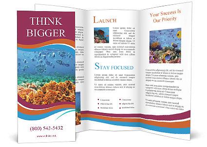 0000078347 Brochure Templates