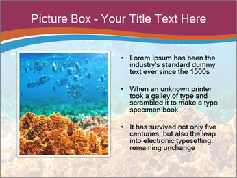 0000078347 PowerPoint Template - Slide 13