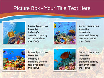 0000078347 PowerPoint Template - Slide 14