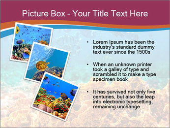 0000078347 PowerPoint Template - Slide 17
