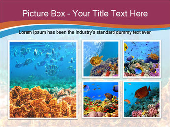 0000078347 PowerPoint Template - Slide 19