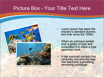 0000078347 PowerPoint Templates - Slide 20