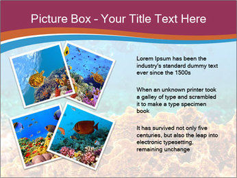 0000078347 PowerPoint Templates - Slide 23