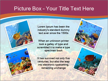 0000078347 PowerPoint Template - Slide 24