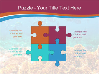 0000078347 PowerPoint Templates - Slide 43