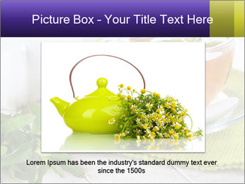0000078348 PowerPoint Template - Slide 15