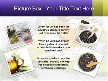 0000078348 PowerPoint Templates - Slide 24