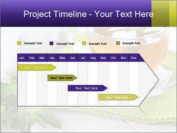0000078348 PowerPoint Template - Slide 25